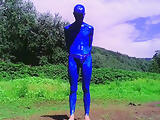Blue Painted Cock Outside