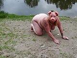 Fat bbw piggy public flash